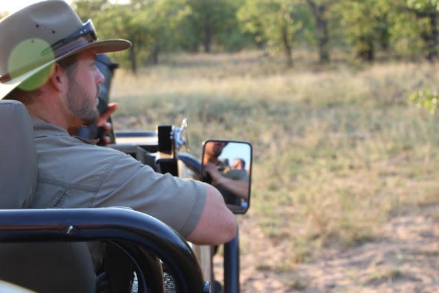 safari-por-sudafrica