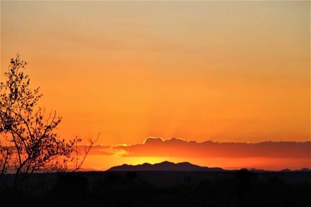 atardecer-safari-sudafrica