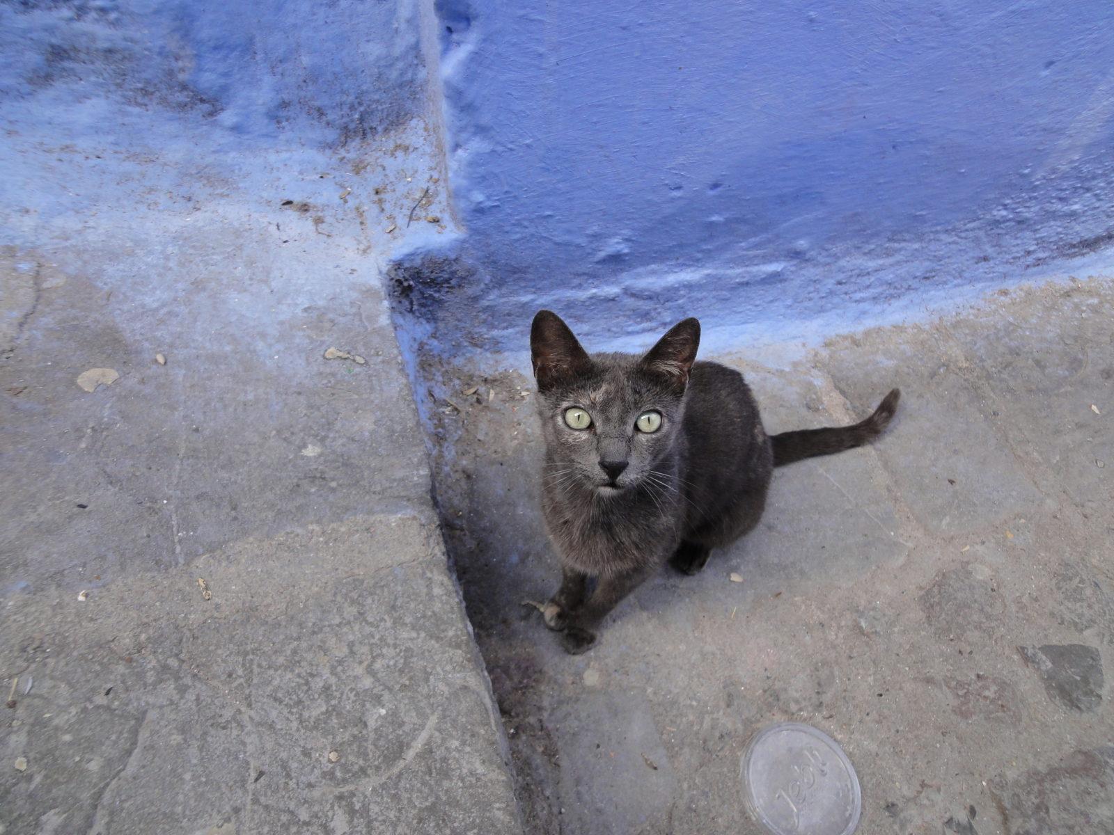 fotos-marruecos-chefchaouen